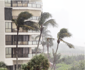 Image of a hotel and palm trees with wind and rain